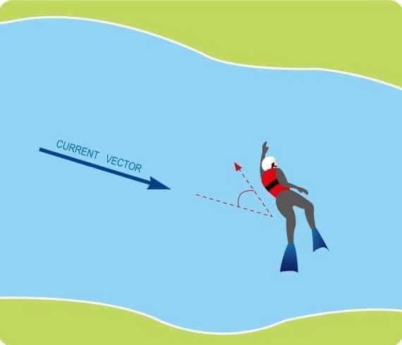 會游泳的人逆流而上往45°角游回到岸上